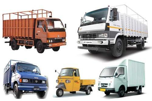 What are the requirements for the transport Services